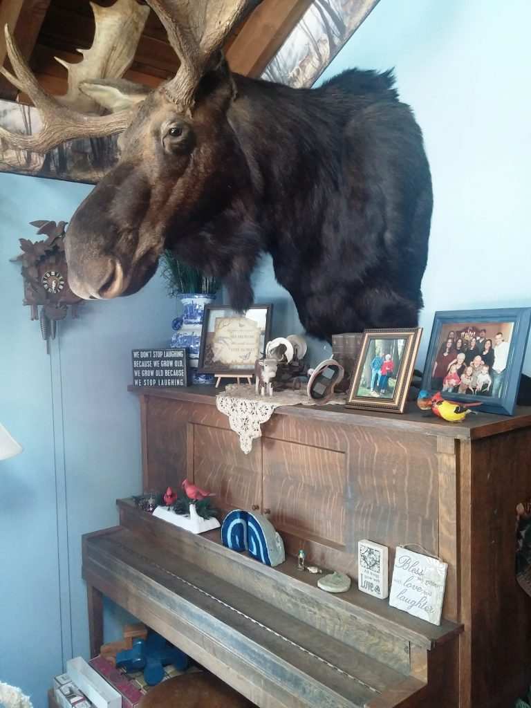 Moose Over Piano